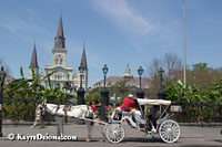 A carriage tour stops in front of Jackson Square in New Orleans, LA.