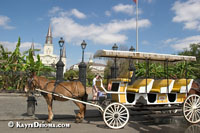Carriage tours depart from Jackson Square.