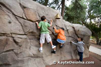 Strata Cliff Climb at Kidspace